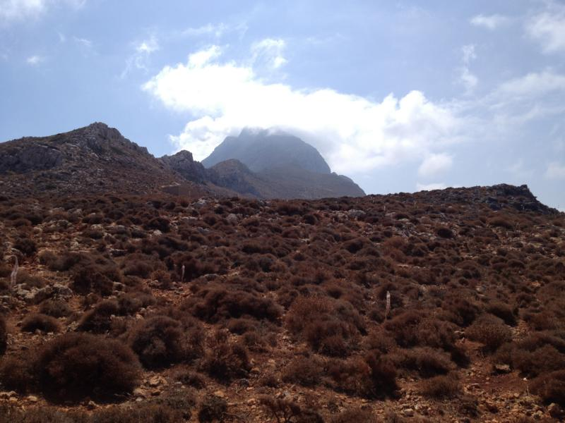Im Vordergrund viel kleines Buschwerk, am höchsten ist der Berg dahinter mit einer hellen Wolke aufgesetzt als Krone des Zeus